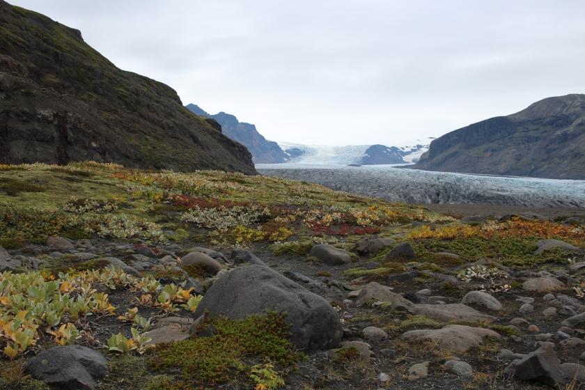Cramped Up Iceland Skaftafell Glacier