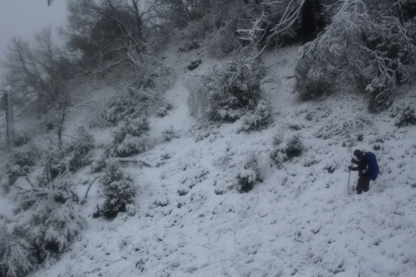 cramped up big sur ventana wilderness snow