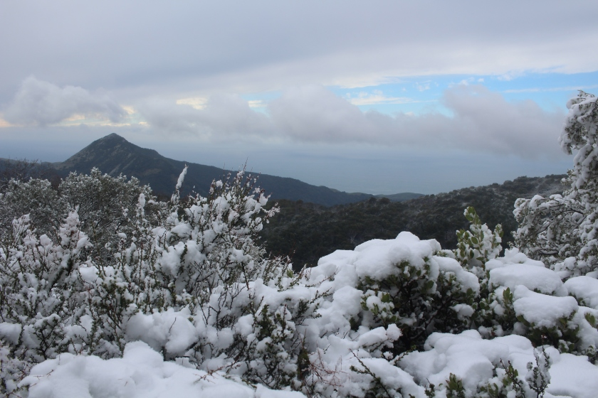 cramped up big sur ventana wilderness snow 2