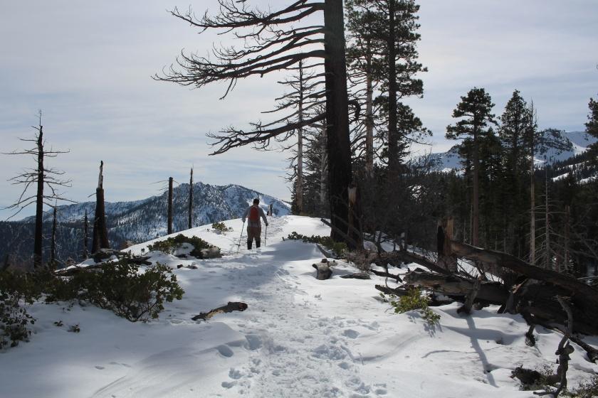 cramped up snow shoe tahoe 6