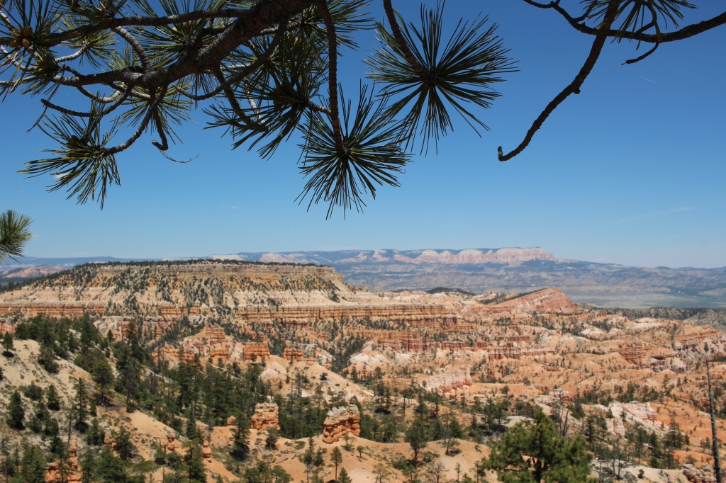 cramped up road trip southwest 9 bryce canyon