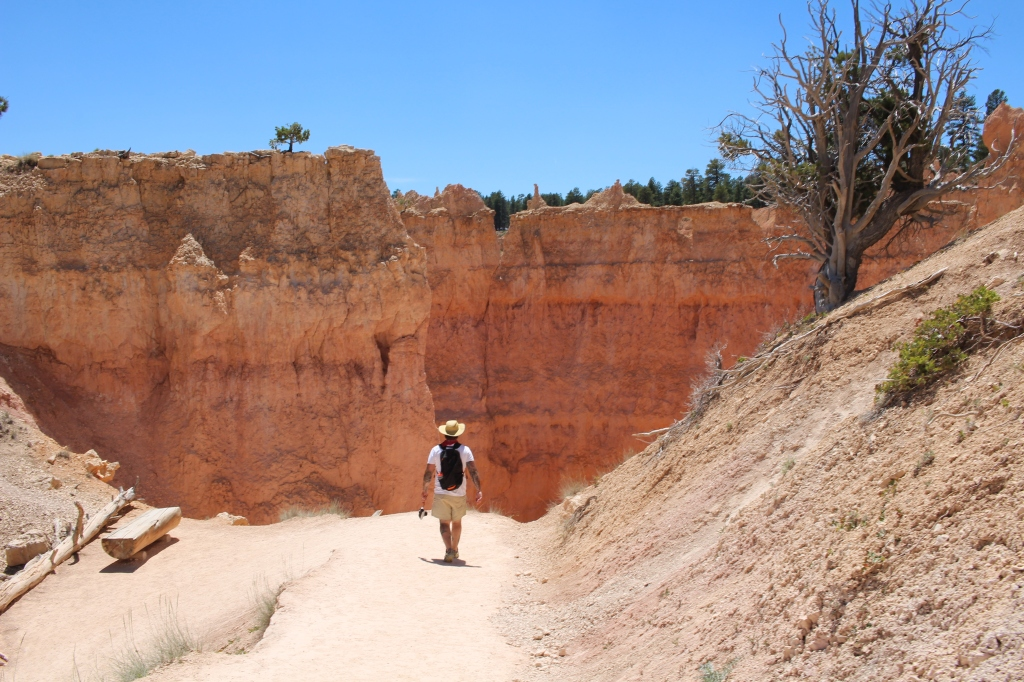 cramped up road trip southwest 7 bryce canyon