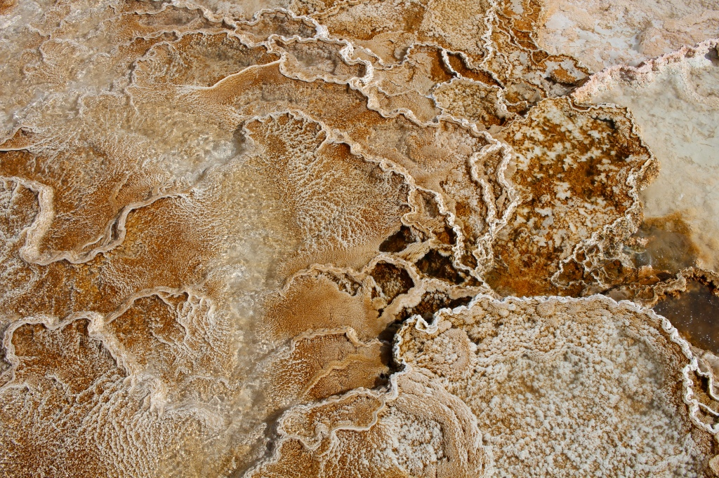 cramped up road trip yellowstone thermal art